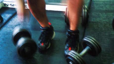 Studies have examined the effects of exercise on fat burning in the liver - the next steps should include testing for humans
