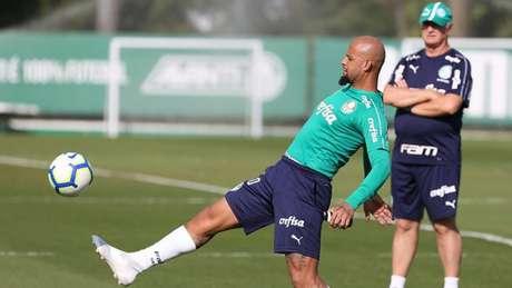 Felipe Melo se recuperou depois de ser liberado do treino de terça-feira por ter febre (Agência Palmeiras/Divulgação)