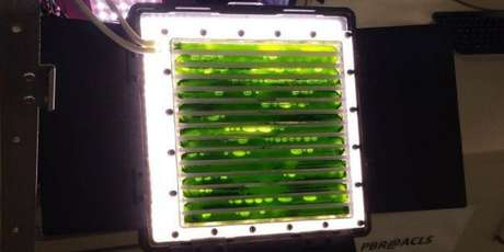 O fotobiorreator da ISS (Foto: Reprodução / Centro Espacial Alemão)