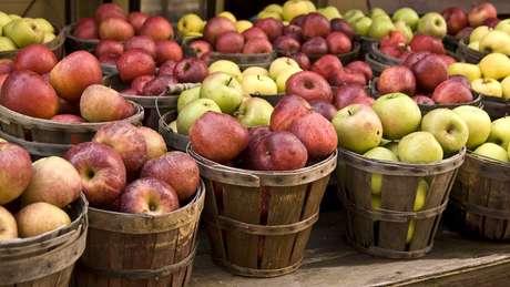 'Popularização' da maçã teve início cerca de 4,5 mil anos atrás