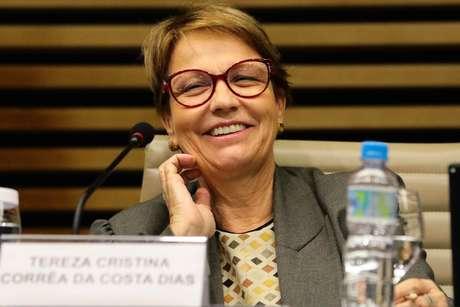 Ministra da Agricultura, Pecuária e Abastecimento, Tereza Cristina
