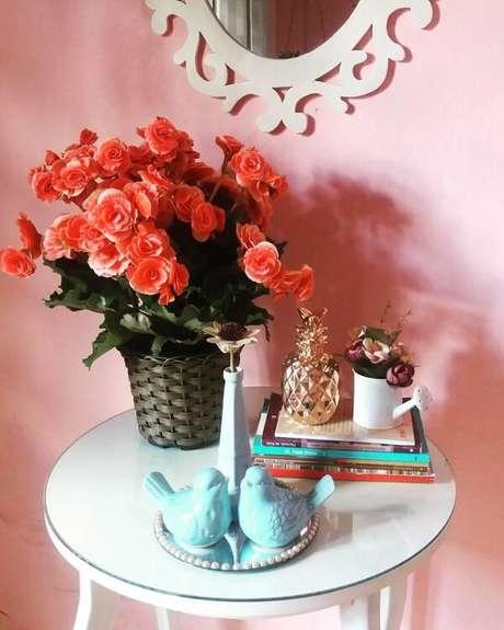 22- A begônia é uma planta decorativa e muito comum no mercado. Fonte: Pinterest