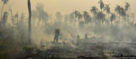 Criado em 2008, fundo para preservar a Amazônia brasileira tem 99% de seus recursos vindos de Alemanha e Noruega