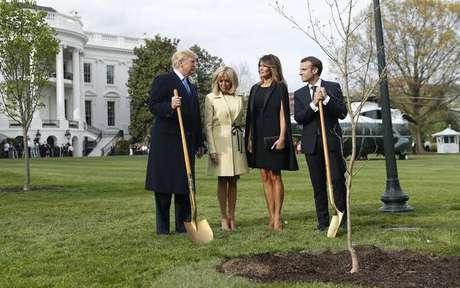 Árvore plantada por Macron e Trump morreu na quarentena