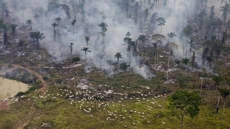 """""""Exploração mineral ilegal já existe, inclusive dentro das terras indígenas"""", disse Salles"""