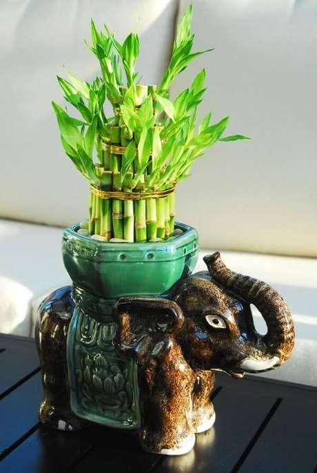 8. Arranjo feito com esse vegetal. Fonte: Pinterest
