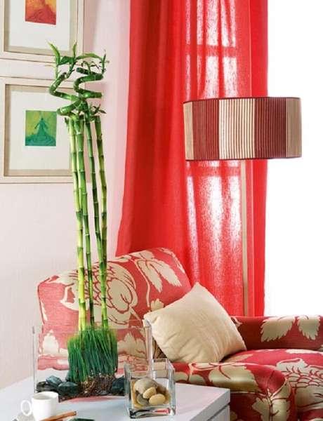 16. Incluaessa planta na decoração da sala de estar. Fonte: Decoração de Apartamentos