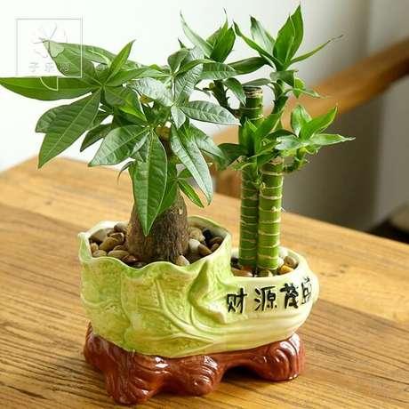 24. Mini arranjopara decoração da casa. Fonte: Pinterest