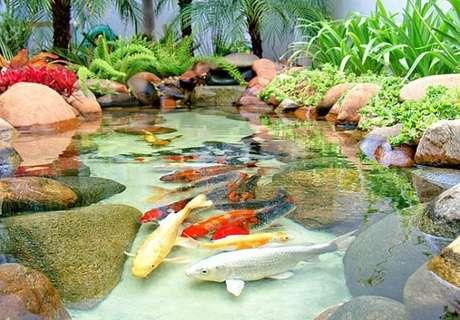 13. Coloque peixes apenas em lagos artificiais maiores – Por: Pinterest