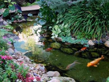 17. Coloque filtro para lago artificial para manter a água sempre em ótimo estado – Por: Lago Sensorial