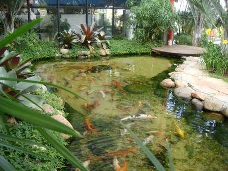 49. O lago artificial com peixes fica ainda mais bonito! Por: Ecovalle