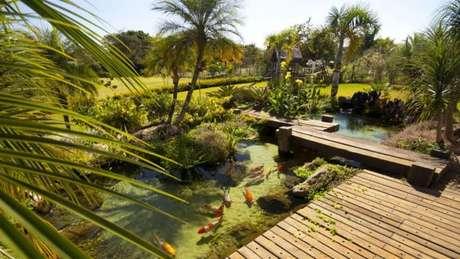 33. Crie paisagens lindas para o seu projeto de casa com o lago artificial – Por: Gazeta do Povo