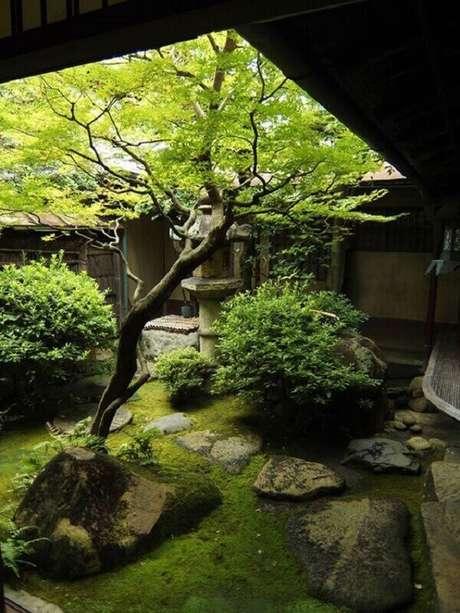 25. Atente-se quanto a escolha das espécies de plantas de acordo com o espaço do Jardim Japonês. Fonte: Pinterest