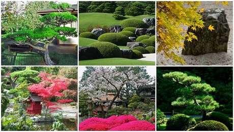 28. Os japoneses tem uma capacidade natural para interpretar o charme das plantas e flores. Fonte: Japão Em Foco