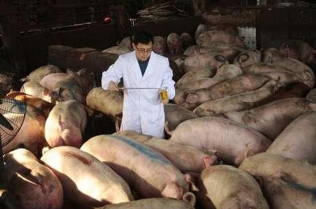 Autoridade sanitária checa porcos em fazenda de Nanjing, Jiangsu, China  15/03/2011 REUTERS/Sean Yong