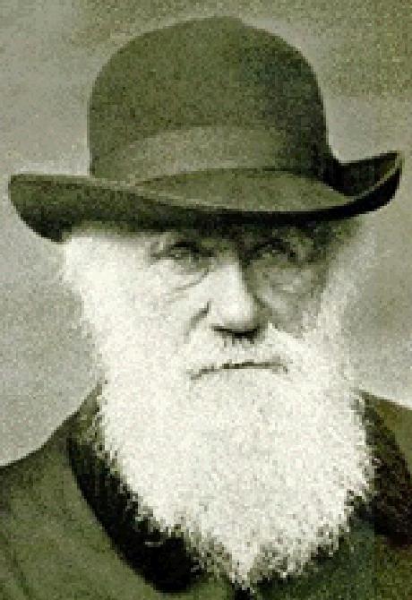 Darwin nesta imagem