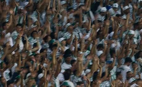 Torcida do Palmeiras já comprou 22 mil ingressos no jogo da Copa do Brasil (Foto: Agência Palmeiras/Divulgação)