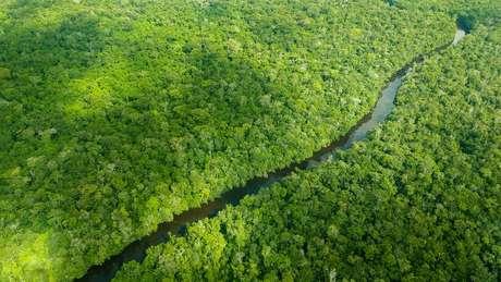 A Noruega é responsável por mais de 90% das doações do Fundo Amazônia
