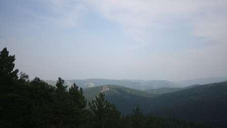 Hoje, existem 5,5 bilhões de hectares de floresta no planeta, como a de Krasnoyask, na Sibéria, Rússia
