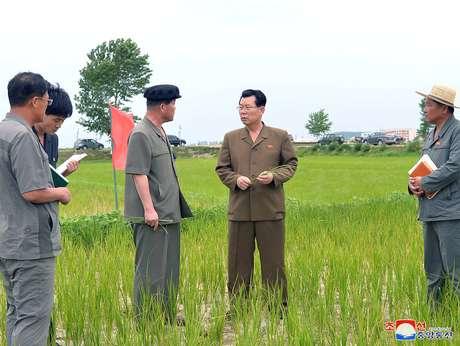 Kim Jae Ryong, membro do Comitê Político Central do Partido dos Trabalhadores da Coreia, inspeciona área de plantação 15/07/2019 KCNA via REUTERS