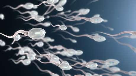Qualidade de espermatozoides diminui com o tempo, segundo pesquisadores