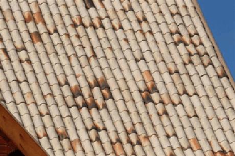13. Foto: Com a telha portuguesa você garante resultados incríveis. Cerâmica Forte