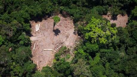 Há menos de 10 anos, o Brasil era visto como líder na proteção ambiental