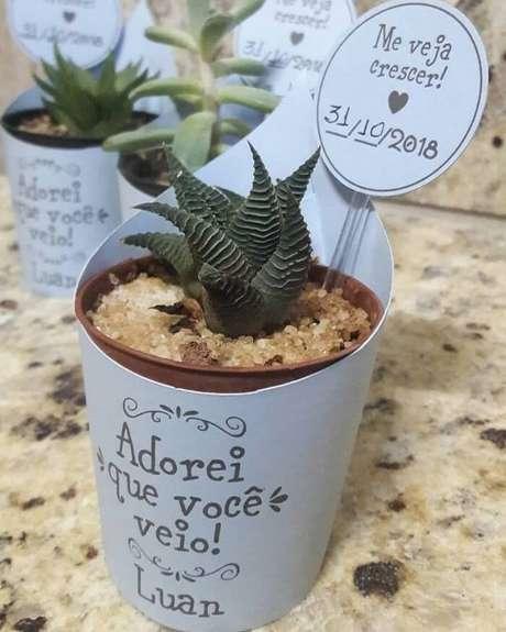 101. Vasinho com suculentas e plaquinha personalizada como lembrancinha de maternidade. Fonte: Pinterest