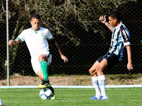 O time sub-20 do Coelho está na terceira posição no Brasileiro sub-20, faltando nove rodadas para o fim da primeira fase (Divulgação/Grêmio)