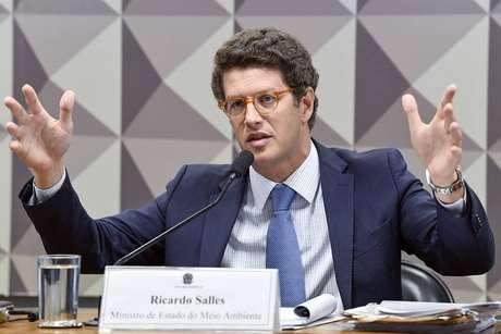 """Durante audiência com senadores, Salles declarou: """"A Noruega é o país que explora petróleo no Ártico, eles caçam baleia"""""""