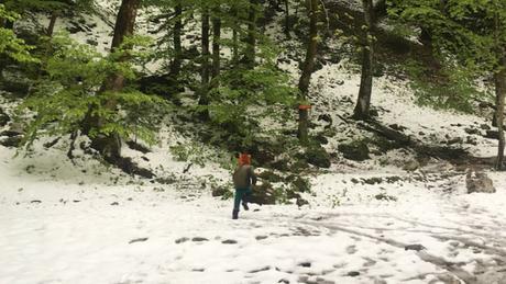 Regiões da Europa tiveram neve atípica em maio deste ano, em plena primavera. Na foto, a região de Vogel, na Eslovênia, aparece coberta de neve na primeira semana de maio