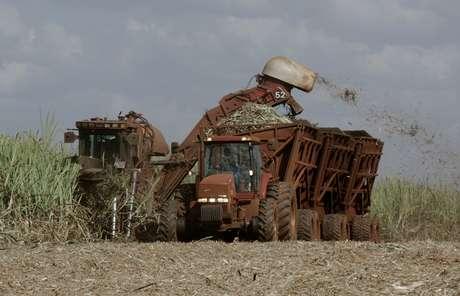 Colheita de cana-de-açúcar em lavoura da São Martinho em Pradópolis (SP)  06/07/2007 REUTERS/Rickey Rogers