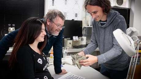 O fóssil encontrado é de um pequeno pedaço de osso, mas a descoberta tem enorme valor científico