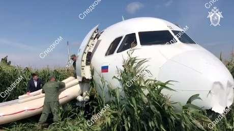 Avião pousou em milharal