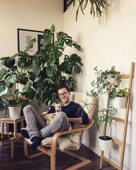 57. A Costela de Adão é uma planta muito fotogênica. Foto: Instagram
