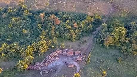 Pesquisadores fizeram monitoramento e análise de dados por quatro anos para apresentar resultados sobre desmatamento na Amazônia