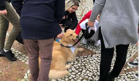 Iniciativa conta com a parceria do Projeto Amigo Bicho,que oferece terapia assistida por animais.