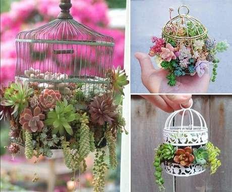 10. Como fazer gaiola decorativa com suculentas. Fonte: Pinterest