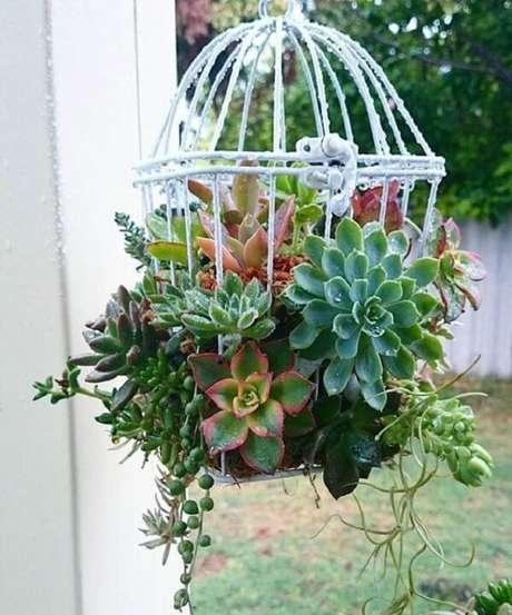 8. Arranjo de suculentas apoiadas na gaiola decorativa. Fonte: Pinterest