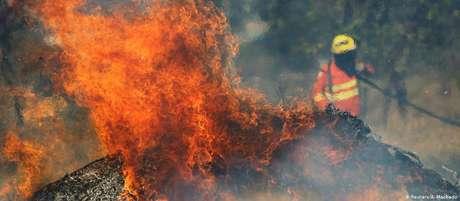 Incêndios florestais atingem Brasil e Bolívia