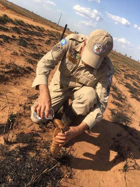 """Imagem se transformou em símbolo das queimadas que afetam o Brasil, mas, segundo Pedro Ribas Alves, que aparece no registro, """"incêndio não foi criminoso, não tinha a ver com desmatamento ilegal ou com floresta"""""""