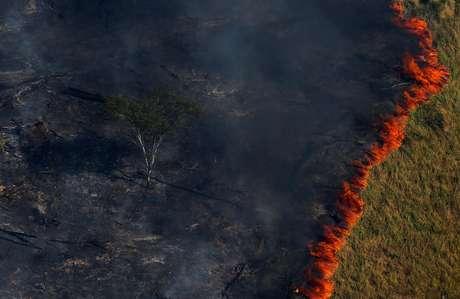 Floresta em chamas em Apuí (AM) 04/08/2017