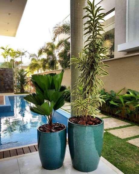 15. As plantas altas são lindas para o vaso vietnamita verde – Por: Pinterest