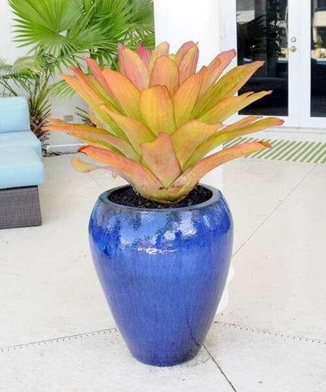 19. O vaso vietnamita original pode destacar sua decoração de forma única – Por: Pinterest