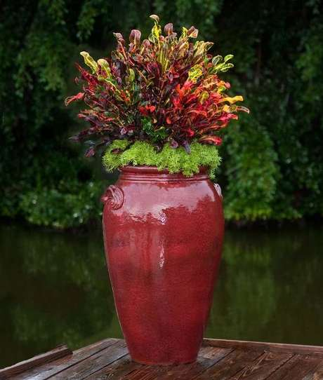 8. O vaso vietnamita vermelho com plantas lindas – Por: Pinterest