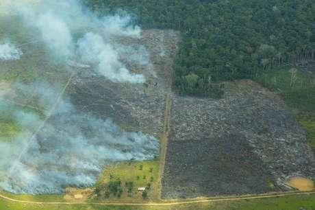 Queimadas na Amazônia, 60% acima da média dos últimos 3 anos, estão ligadas a desmatamento