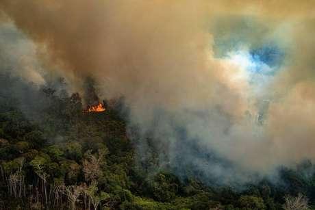 Incêndio no Estado de Rondônia neste sábado, 24