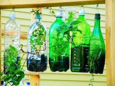 24. Horta em casa com garrafas pet. Foto de Flickr