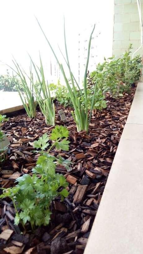 17. No projeto de Casa Green Paisagismo, a horta caseira foi organizada na sacada