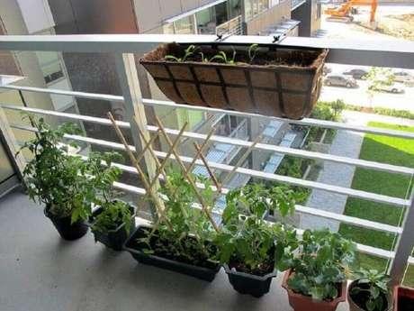 46. Horta em casa na varanda. Foto de Pinterest